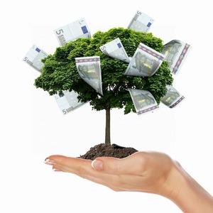 Fonds verwalten